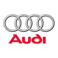 Audi Bumper Protectors