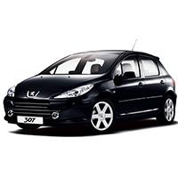 Peugeot 307 (All Models)