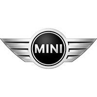 Mini Car Mats