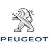 To Fit Peugeot Car Mats