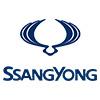 Ssang Yong Bumper Protectors